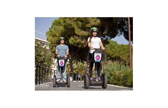 Mobilboard TM 13 - Coulon
