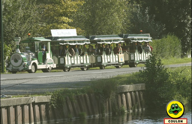 Le Petit Train du Marais 4 - Coulon