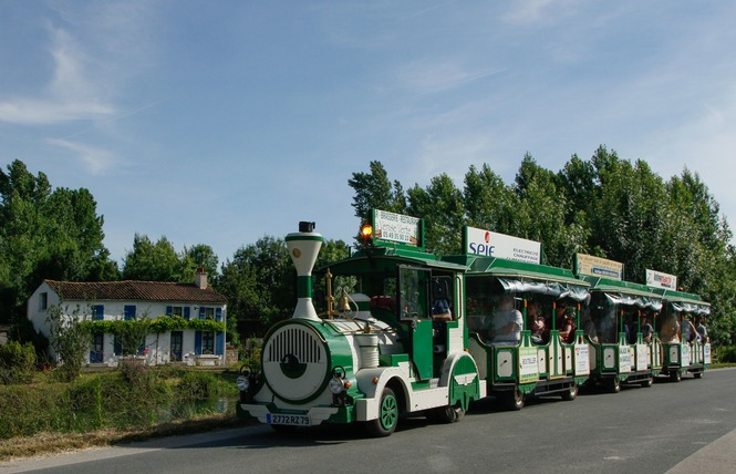 Le Petit Train du Marais 1 - Coulon