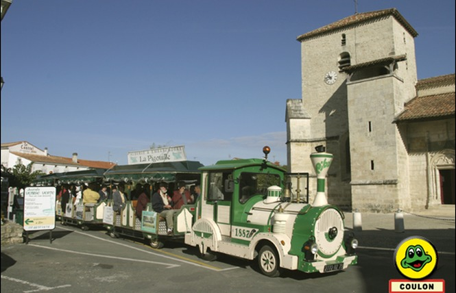 Le Petit Train du Marais 2 - Coulon
